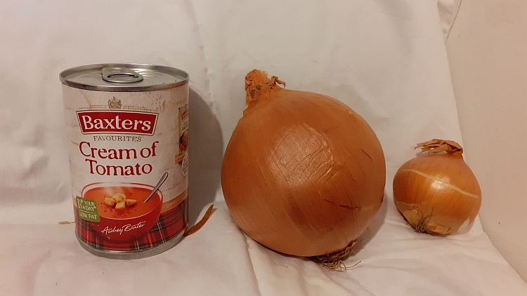 A large onion and a normal-sized onion next to a tin of soup
