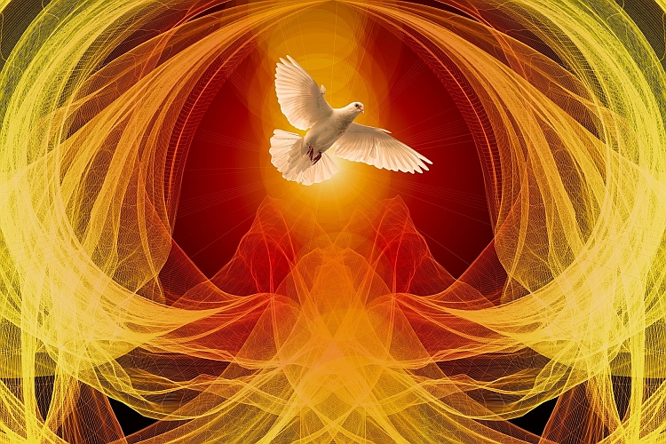 An image of a dove surrounded by flame coloured patterns