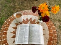 A Bible on a garden table open at Esther with a cup of tea and some flowers behind it