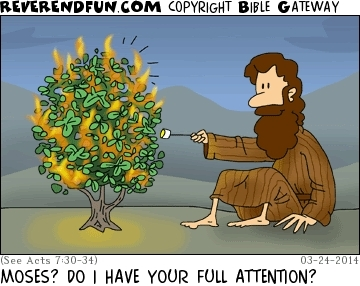 """A cartoon of Moses toasting marshmallows on a burning bush with the caption """"Moses? Do I have your full attention?"""""""