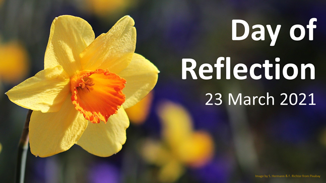 """A picture of a daffodil with the words """"Day of Reflection - 23 March 2021"""""""