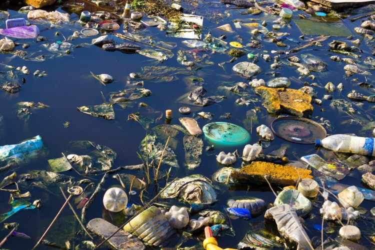 Plastic pollution floating on a lake/sea