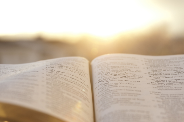 OpenBible with bright sunset in the background. Close-up. Horizontal shot.