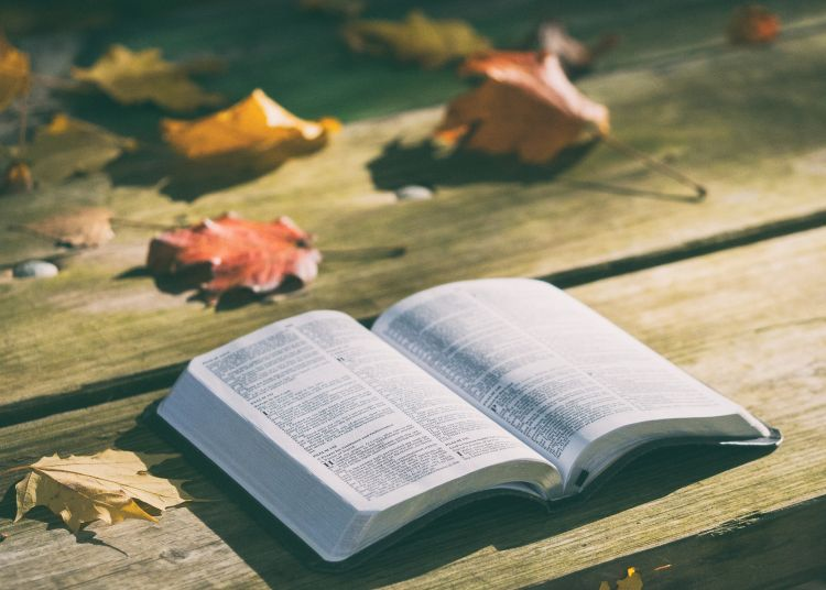 A Bible on a table with autumn leaves behind it