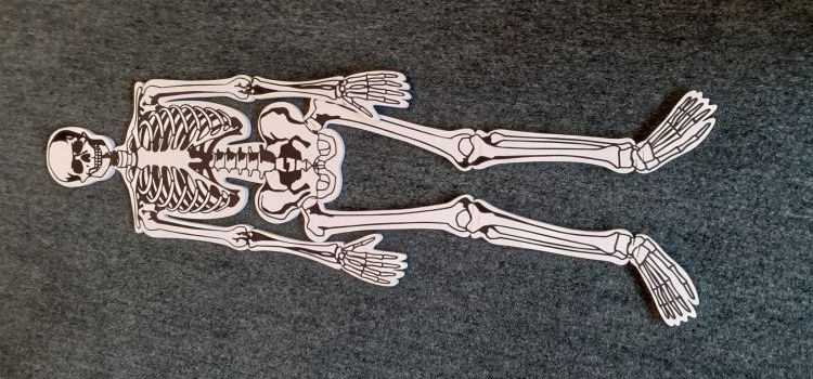 A skeleton made of puzzle pieces on a carpeted floor